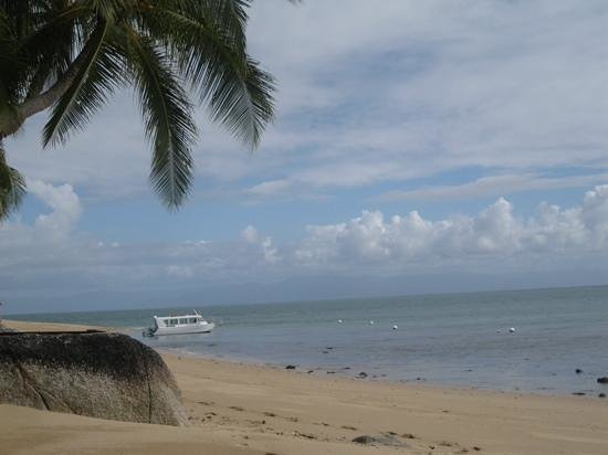 Mission Beach Dunk Island Water Taxi: Our own private beach for an early happy hour