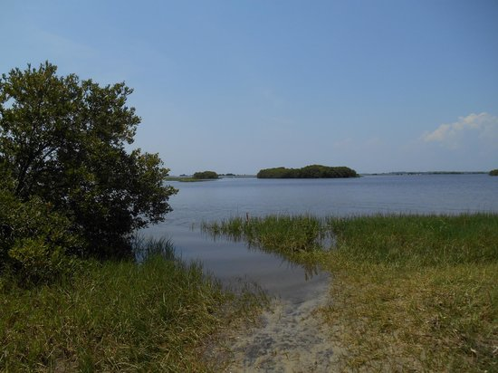 Cedar Key Museum State Park: Nature trail ending at the Gulf