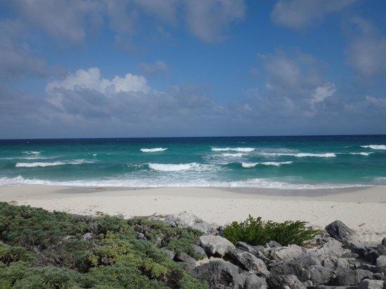 Punta Sur Eco Beach Park : Gorgeous Cozumel/Punta Sur 5/21/14