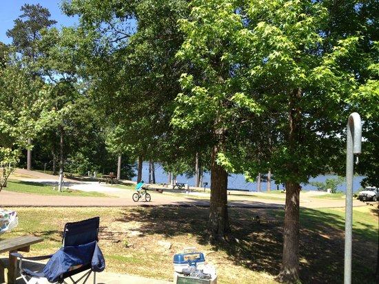 Yogi on the Lake: Pretty campground area