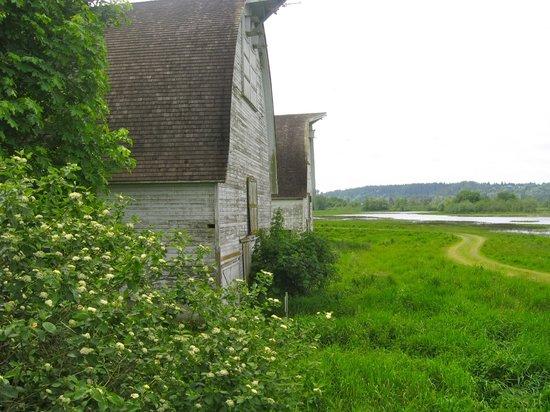 Nisqually National Wildlife Refuge : Nisqually barns