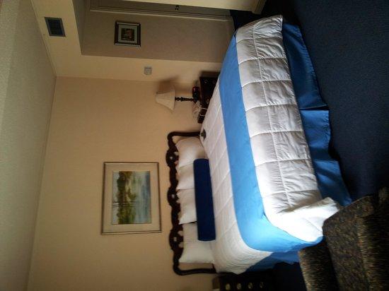 Menger Hotel: Room
