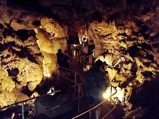 Lake Shasta Caverns : ....tour