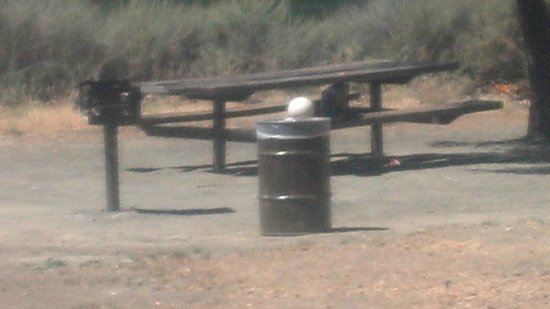 Del Valle Regional Park: a table, trash can and bbq grill are provided by the park a nic e touch, Just bring your own foo