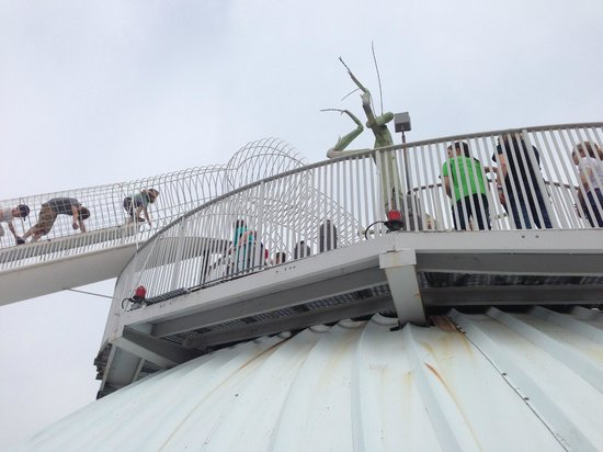 City Museum: More fun on the roof