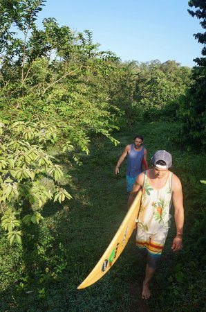 Up in the Hill - Coffee Shop & Organic Farm : hike down to the beach