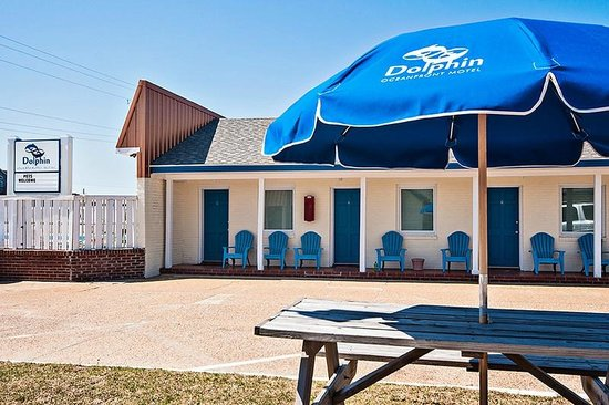 Dolphin Oceanfront Motel: Courtyard & picnic area