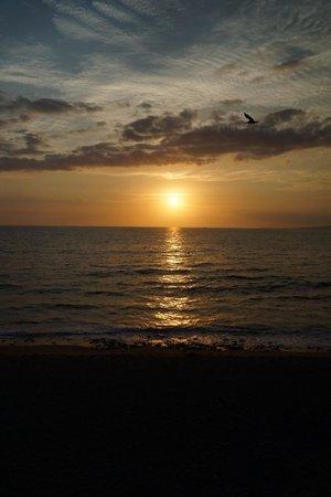 CasaMagna Marriott Puerto Vallarta Resort & Spa : sunset from the Malecon