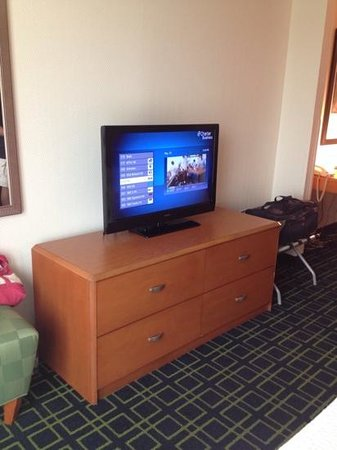 Fairfield Inn & Suites Asheville South/Biltmore Square: TV