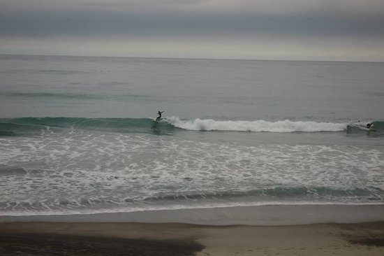 Pacific Surfliner: Ocean View from the Train