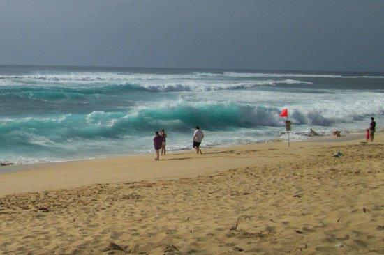 Sunset Beach Park : BIG waves