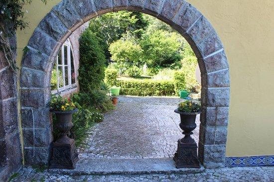 Cinco Bed & Breakfast : Patio and Gardens
