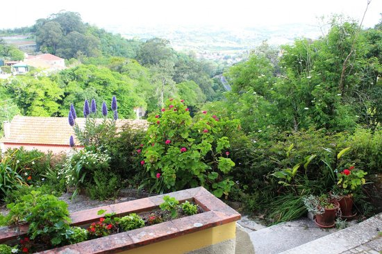 Cinco Bed & Breakfast : View from Terrace