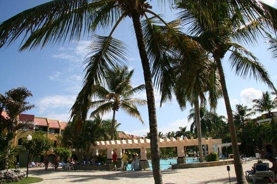 Casa Marina Beach & Reef: beach area