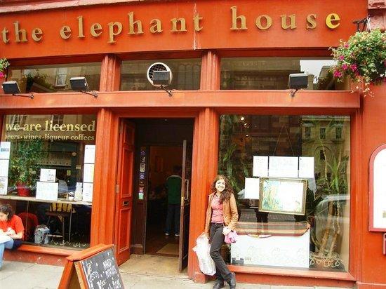 Elephant House : Fachada