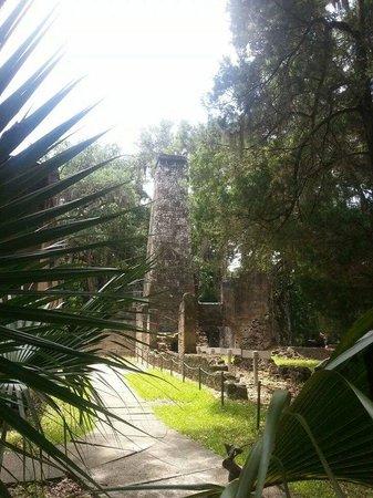 Bulow Plantation Ruins Historic State Park: the historic sugar mill ruins