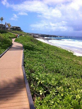 Kapalua Coastal Trail: Oneloa Beach