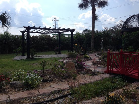 Casa Coquina Bed and Breakfast : Pretty garden