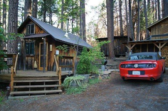 Sunset Inn Yosemite Vacation Cabins: Cabin and surroundings