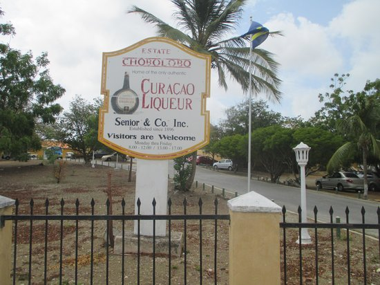 Curacao Liqueur Distillery: la entrada