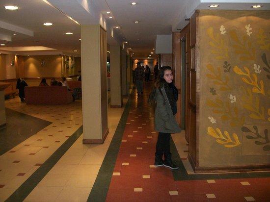 Hotel Aguas Del Sur : hall de entrada