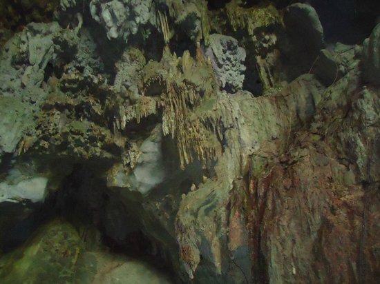 Parque de las Cavernas del Rio Camuy : Formaciones en distintos colores