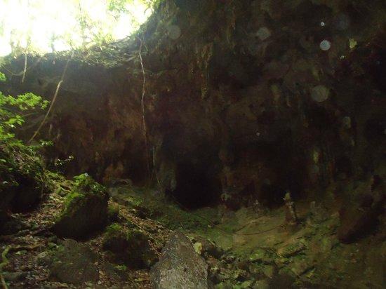Parque de las Cavernas del Rio Camuy : Otra de las salidas