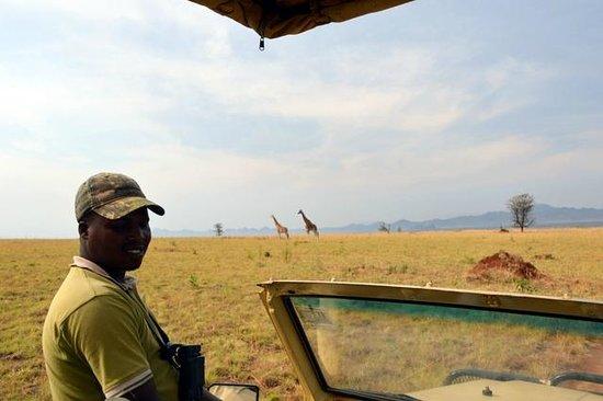 Apoka Safari Lodge: Giraffe Game Drive