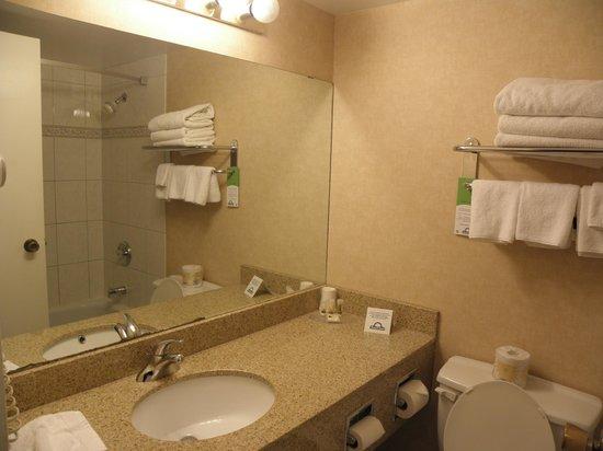 Days Inn - Calgary South: bathroom