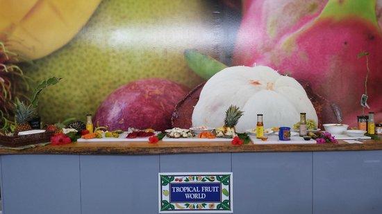 Tropical Fruit World: Best fruit platter ever!