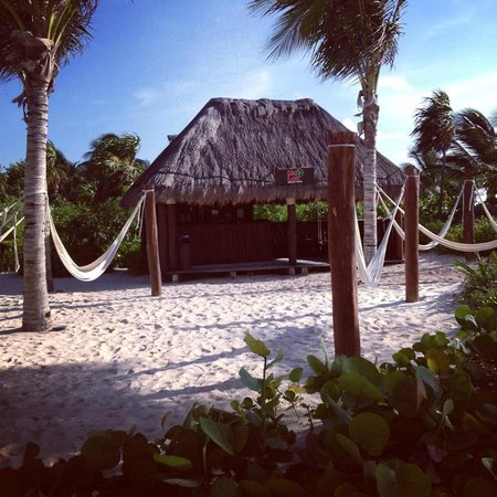 Catalonia Playa Maroma: juice bar