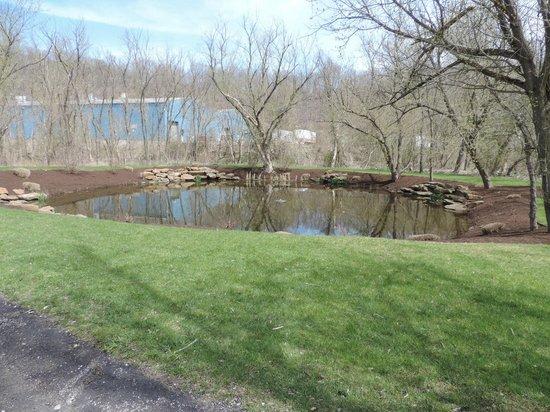 Bella Sera: pond out back