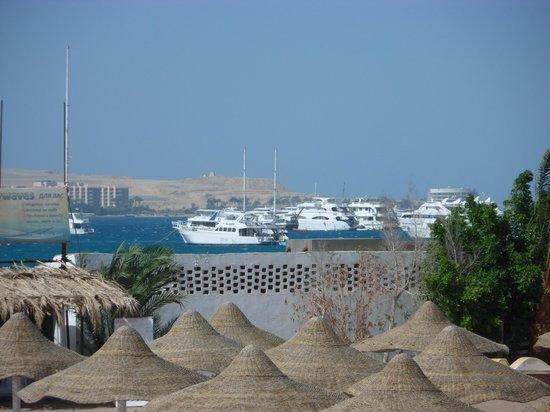 El Samaka Beach Hotel: вид с номера, снимала с приближением,через пляж