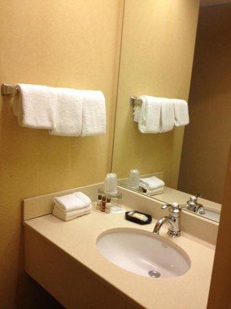 St. Louis City Center Hotel: Bathroom
