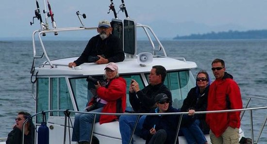 Maya's Legacy Whale Watching : Our tour with Captain Jim
