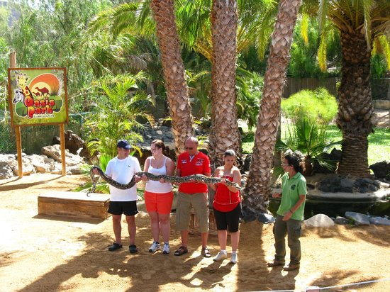 Piękne zwierzęta - Picture of Oasis Park Fuerteventura, Fuerteventura - TripA...