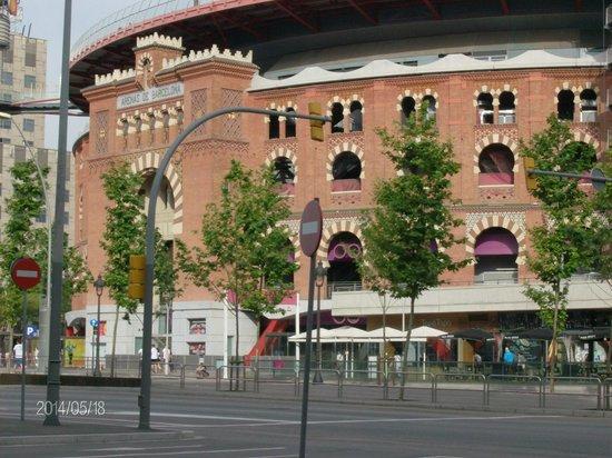 Arena foto di atenea calabria apartaments barcellona for Migliori hotel barcellona