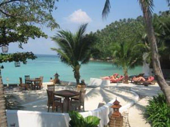 Green Papaya Resort: beach