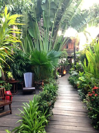 Baan Rabiang Nam or River Tree House : Walk way to the restaurant