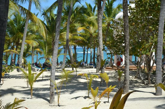 Hotel Riu Palace Punta Cana: View of the beach from the pool bar