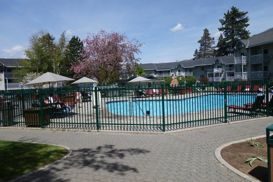 Beach Retreat & Lodge at Tahoe: The heated pool