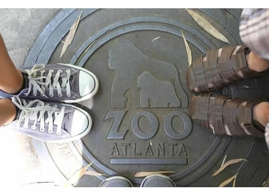 Zoo Atlanta: All feet in