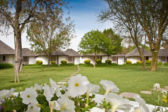 Protea Hotel Oudtshoorn Riempie Estate: Hotel Gardens - All rooms situated in the lush green garden