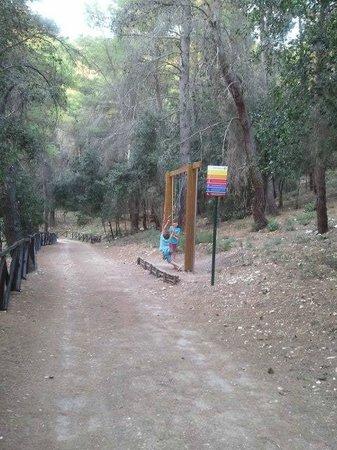 Villaggio Turistico Calenella: pineta con giochi per bambini