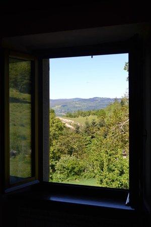 Agriturismo Casa Pallino: Window view