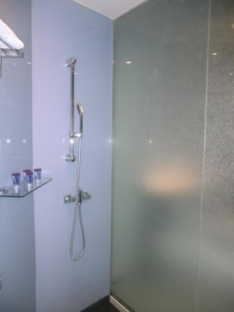 Le Apple Boutique Hotel : Shower details