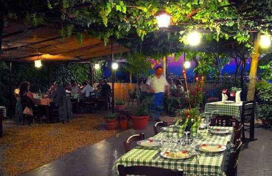 Bruno in terrazza con vista su Roma - Picture of Ristorante Casa ...