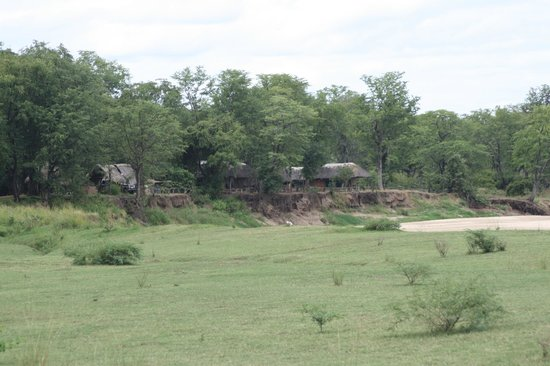 Wildlife Camp: View of campsite from Reception