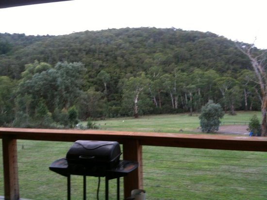 Yering Gorge Cottages: The view