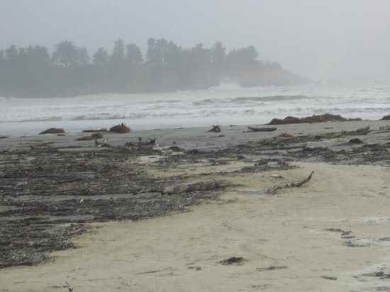 Caroline Bay Beach: after the cyclone